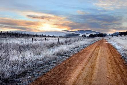 A photo of morning frost at Spring Flat, Mudgee. Photo by Amber Hooper