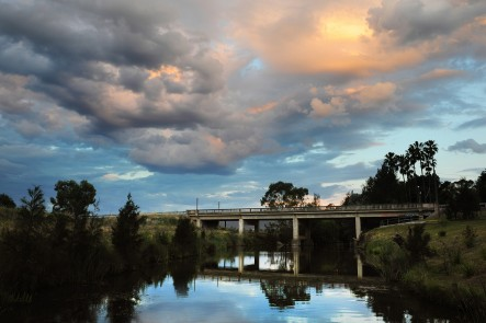 A photo of Holyoak Bridgee, Mudgee. Photo by Amber Hooper.