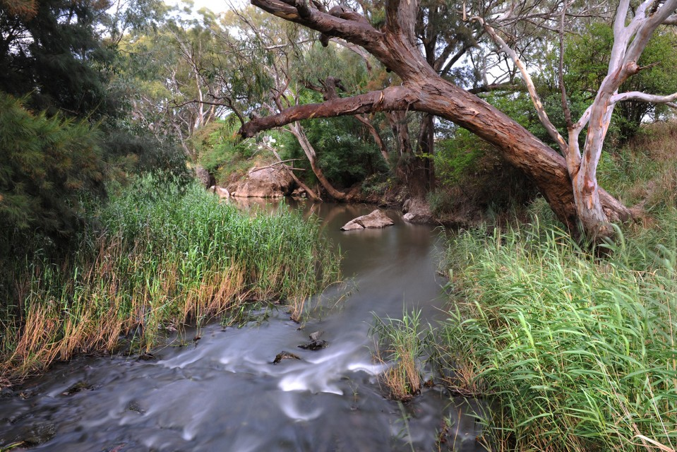 A photo of Rocky Waterhole, Mudgee. Photo by Amber Hooper.